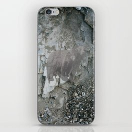 STONE BEAR iPhone Skin