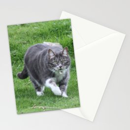 On the Prowl Stationery Cards