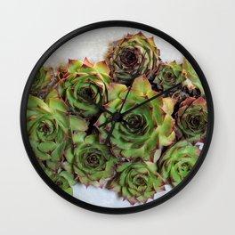 Succulent plants Wall Clock