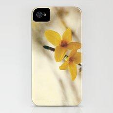 Forsythia iPhone (4, 4s) Slim Case