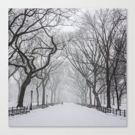 Central Park during Blizzard of 2015 Canvas Print
