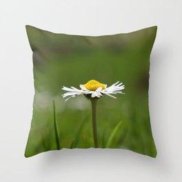 Bela rada Throw Pillow