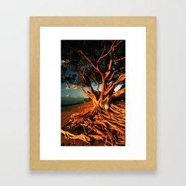 Oceanfront Tree Framed Art Print