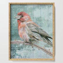 House Finch Serving Tray