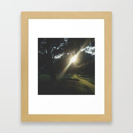 Kentucky Sunshine Framed Art Print