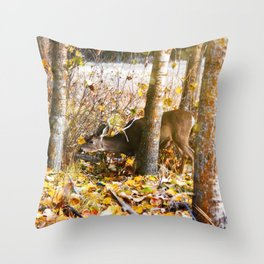 Deer In The Aspens Throw Pillow