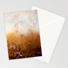 Soft Light Stationery Cards