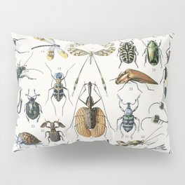 Adolphe Millot- Vintage Insect Print Pillow Sham