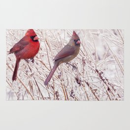 Male and Female Northern Cardinals in the winter Rug
