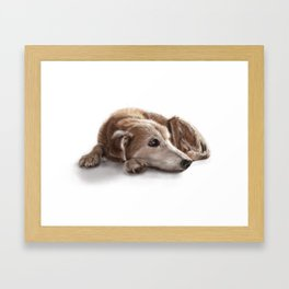 "Canna ""Missing You"" Framed Art Print"