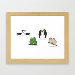 Lesbian Bird Species Framed Art Print