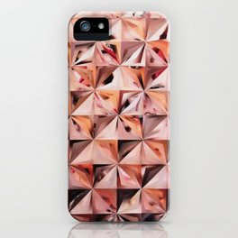 The Mirror's Image iPhone Case