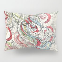 Beautiful Vintage Map of the Mississippi River Pillow Sham
