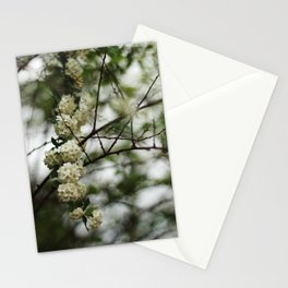 All-Natural Bokeh Stationery Cards