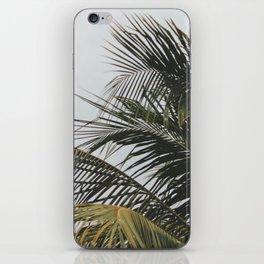 palm treee iPhone Skin