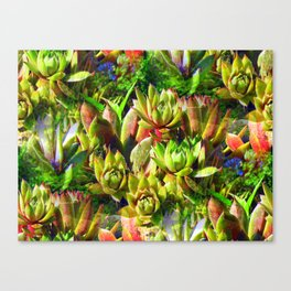 """""""Hens and Chicks"""" Made Seamless Canvas Print"""