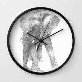 African Elephant, Loxodonta Africana Wall Clock