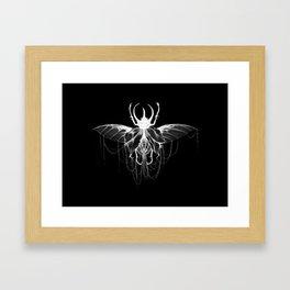 Lace Beetle  Framed Art Print