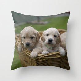 Golden Retriever Puppies - Puppies in a Basket Throw Pillow