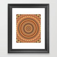Mandala 539 Framed Art Print