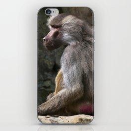 OLIVE BABOON iPhone Skin