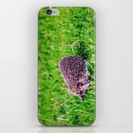 Dandelion Run iPhone Skin