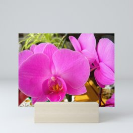 Purple orchid Mini Art Print