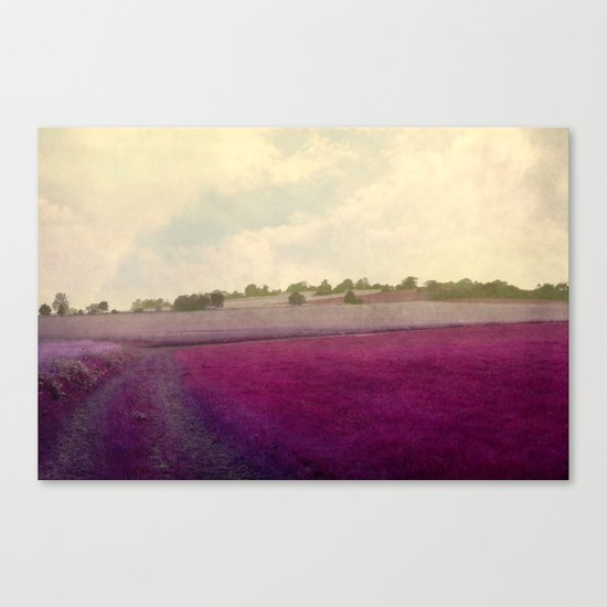pink fever Canvas Print