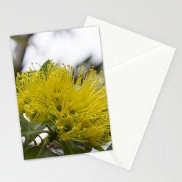 Golden Penda Stationery Cards