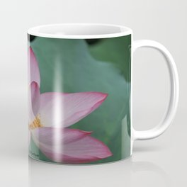 Hangzhou Lotus Coffee Mug