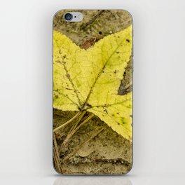The Yellow Leaf iPhone Skin
