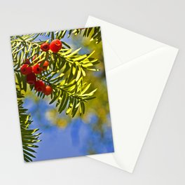 Conifer Stationery Cards