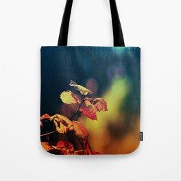 Hazelnuttree in Autumnlight Tote Bag