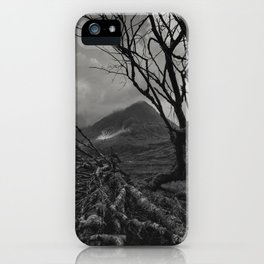 The web of winter iPhone Case