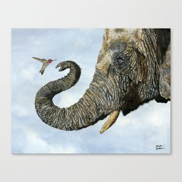Elephant Cyril And Hummingbird Ayre Canvas Print