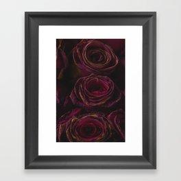Misteriose Vintage Roses in Plum Framed Art Print