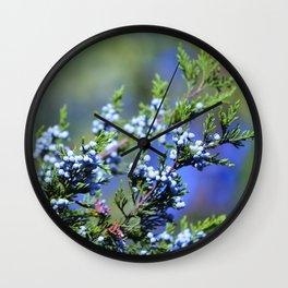 Light Blue Juniper Berries Wall Clock