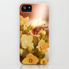 Honey herder 2 iPhone Case
