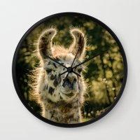 llama Wall Clocks featuring Llama by LudaNayvelt