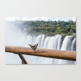 Butterfly over Iguazu Falls, Argentina Canvas Print
