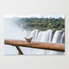 Butterfly over Iguazu Falls, Argentina Canvas Print