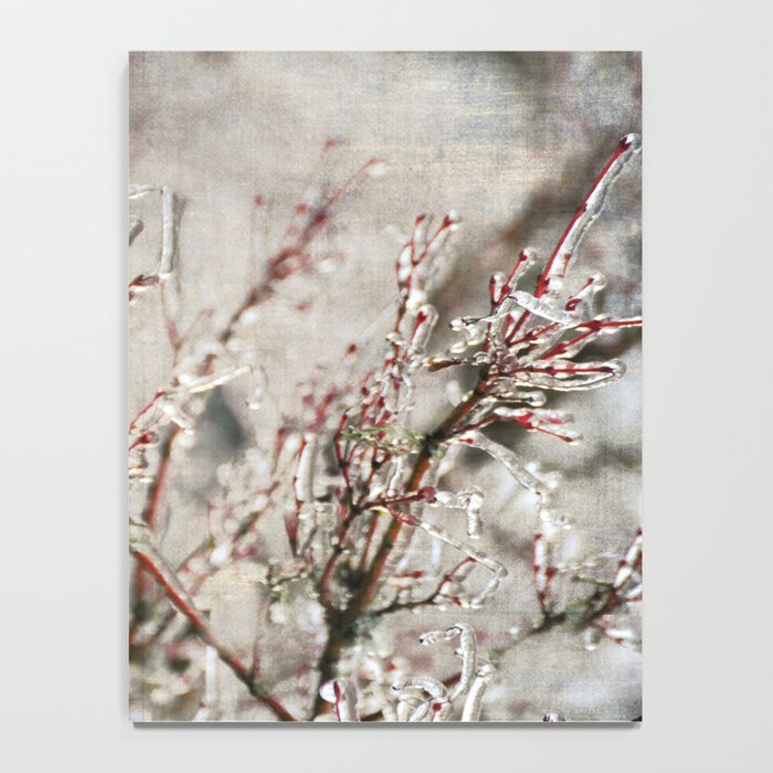 ICICLE BRANCHES Notebook