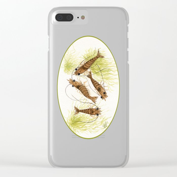 """Shrimp"" by Amber Marine ~ Watercolor Painting, (Copyright 2013) Clear iPhone Case"