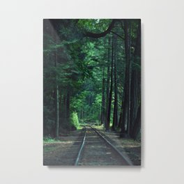 Train Rails in the Forest Metal Print