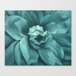 Soft Teal Flower Canvas Print