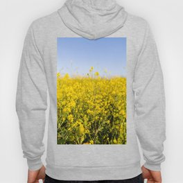 Bright yellow spring flowers pattern blue sky photography Hoody