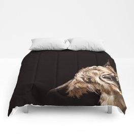 Sneaky Highland Cow in Black Comforters