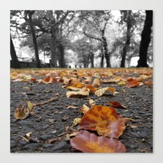 Autumn paths Canvas Print