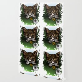 Calico Kitty Wallpaper