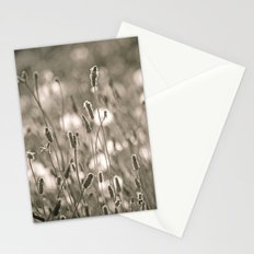 Oh, Muse Stationery Cards